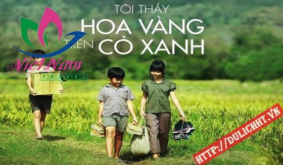 hoa vàng cỏ xanh Phú Yên
