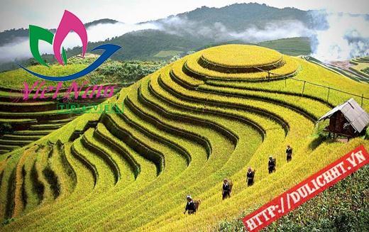 Tour Tây Bắc - Tràng An - Đền Hùng